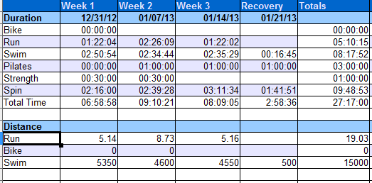 4 Week Phase Summary. Click for larger image.