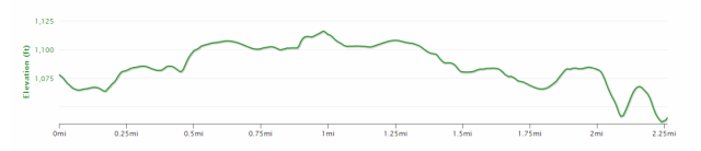 Brick run course elevation profile.  Taken from previous run.