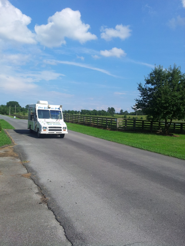 I really did see an ice cream truck playing its tune super loud in the middle of nowhere!
