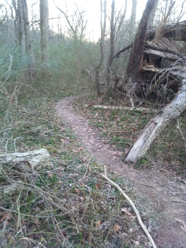 Nice muddy trails for me to run.