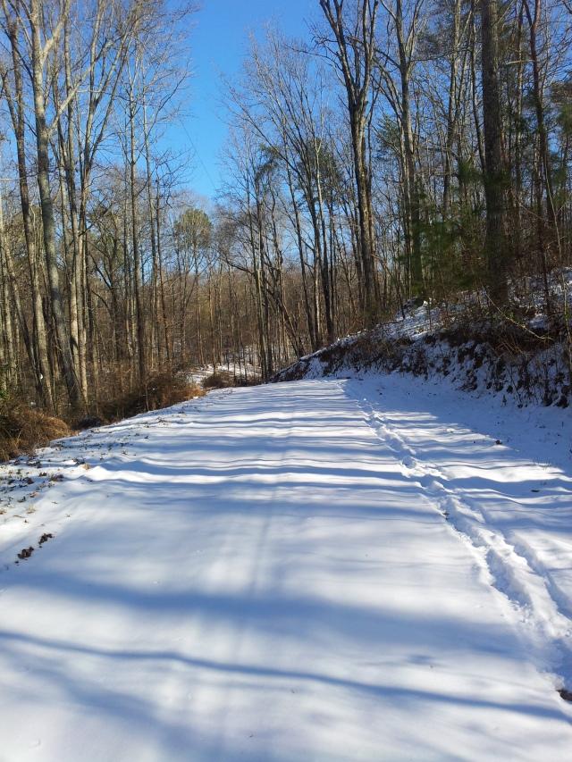 Georgia became a snowy wonderland.