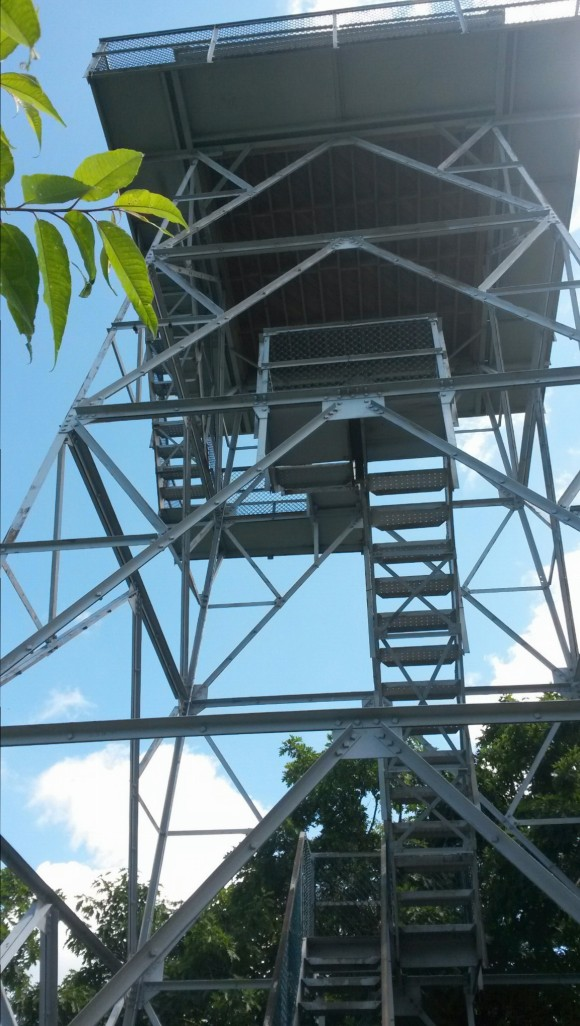 The fire tower atop the mountain.