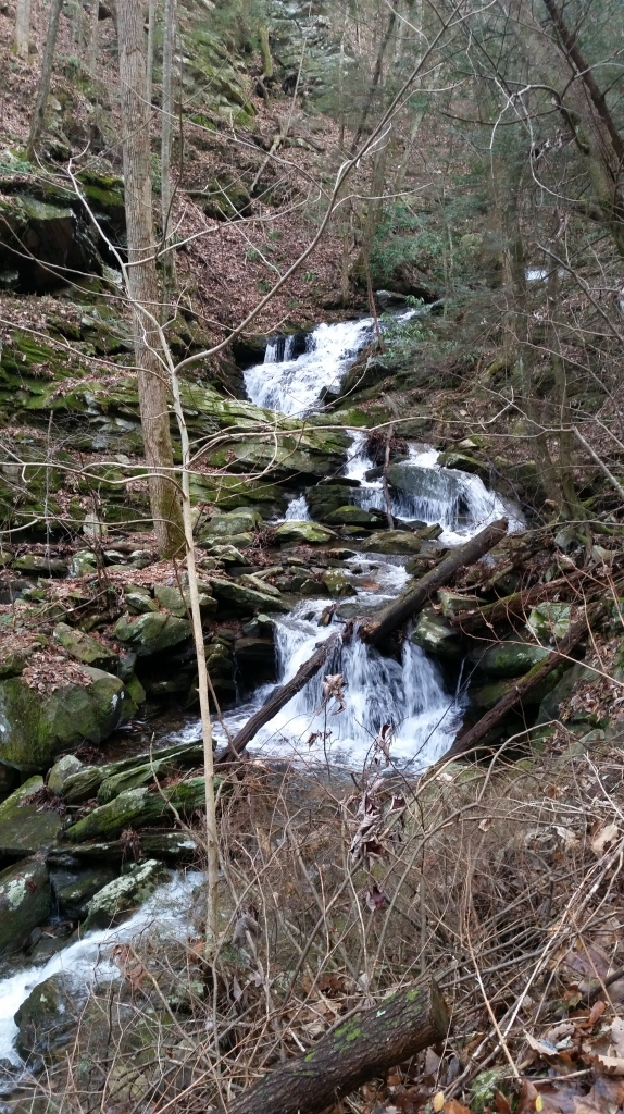 At mile 10-11 the trail become super steep.  For 2.5 miles the trail climbs over 1300 feet.  For the entire climb there is a massive waterfall rushing down the mountain.  Water everywhere.  This area is so remote there are very few people on this section of trail.