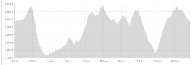 Saturday's elevation profile.