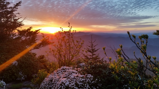 Sunrise from 6,500 feet on Myrtle Point/Mount Le Conte.